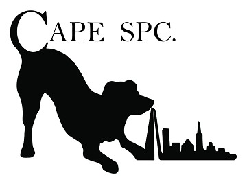 CAPE SPC: Exhibiting at the Takeaway Innovation Expo